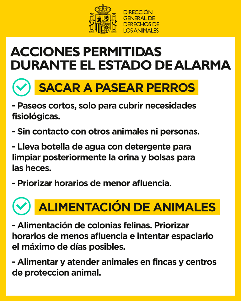 Acciones permitidas con mascotas durante Covid 19 - Qué Acciones con Mascotas están Permitidas durante el Estado de Alarma