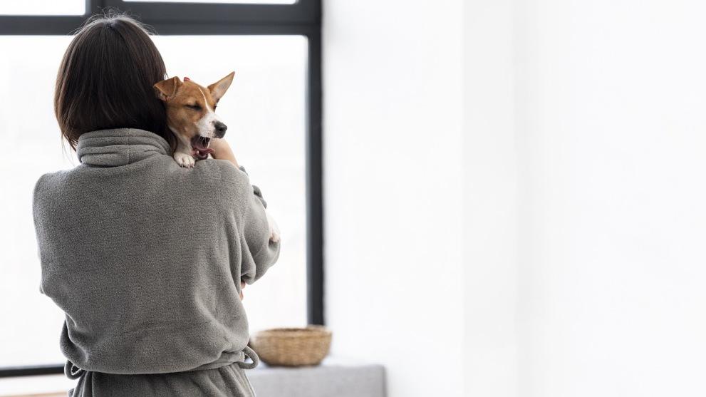 Como banar a tu perro - Cómo limpiar tu casa cuando tienes un perro
