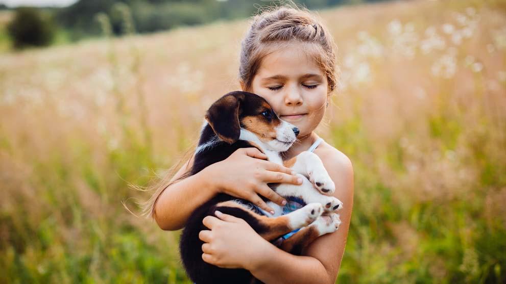adoptar cachorros - Cachorros adorables que te sacarán más de una sonrisa