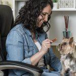 juega con perro casa 150x150 - Teletrabajo: la oportunidad para disfrutar con tu perro en casa