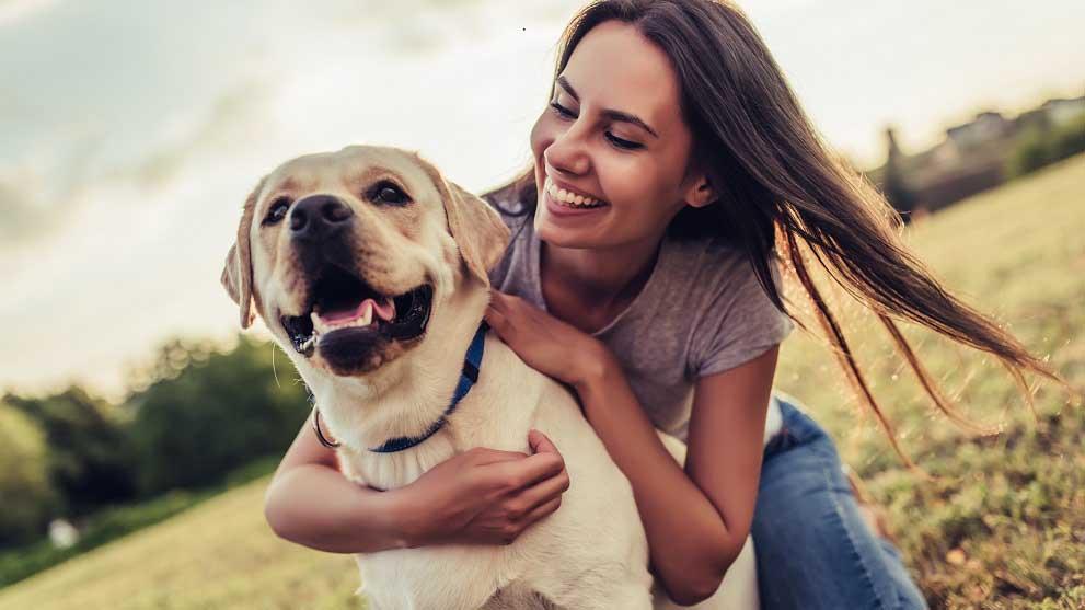 mitos esterilizacion perros - Consejos para viajar con perro y disfrutar al máximo