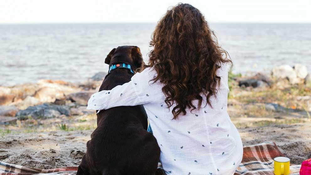 playas para perros - Consejos para cuidar a tu mascota durante la cuarentena