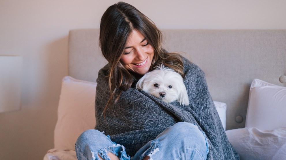 tienen frio perros - ¿Los perros pasan frío en invierno?
