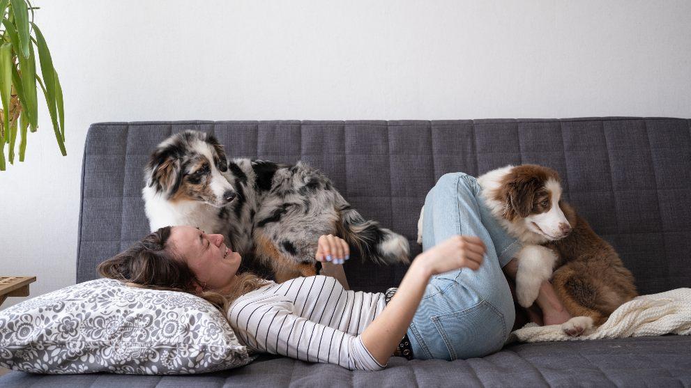 mujer con dos perros - ¿Cuánto cuesta adoptar a un perro?